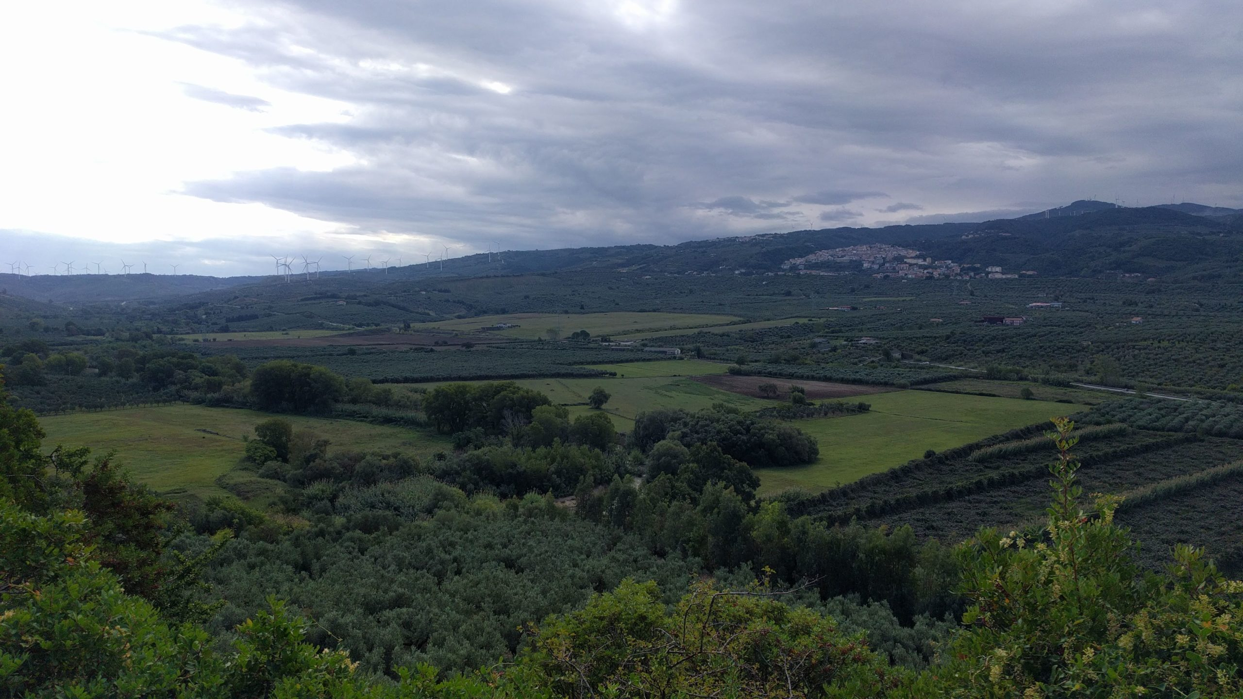 Calabrian Countryside - Steak Club
